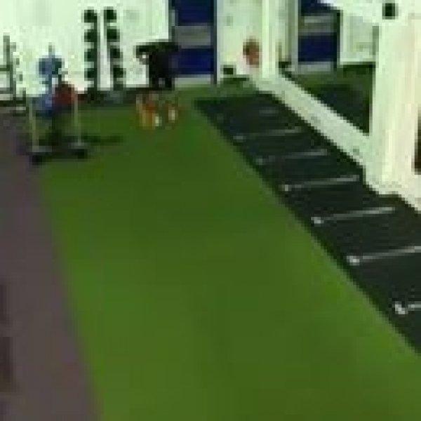 Foi fazer exercício com elástico na academia e se deu mal hahaha!