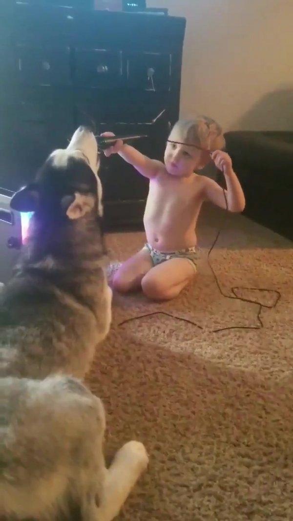 Cachorro e criança uivando no microfone, que dupla hein!