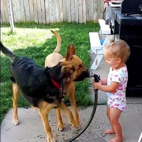 Cachorro e criança uma mistura mais do que perfeita, impossível não sorrir!!!