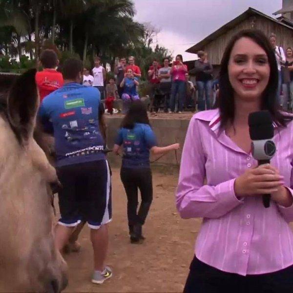 Cavalo não deixa repórter fazer entrevista, toda hora ele interrompe confira!!