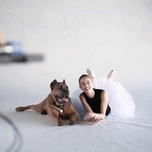 Ensaio fotográfico de bailarinos com seus cachorros, ficou muito legal!