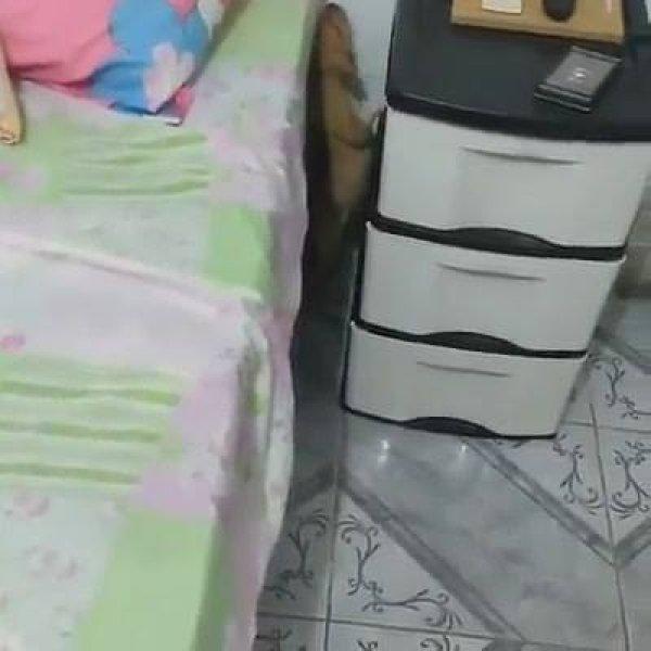 Filhote de cachorro tentando subir na cama, olha só como ele é persistente!!!