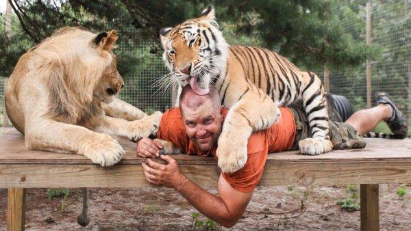 Homem que é amado por felinos selvagens, que linda amizade!