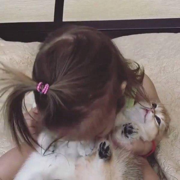 Menina abraçando seus animais de estimação, quanto amor envolvido!
