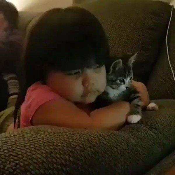 Menina e gatinho assistindo televisão, uma dupla de amizade eterna!