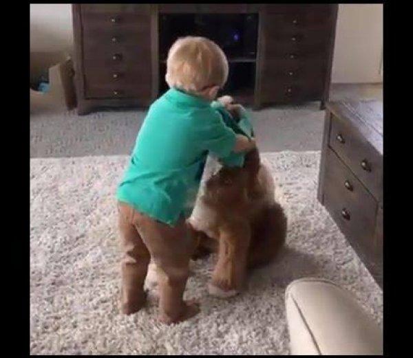 Menino coloca camiseta no cachorro igual a dele para tirar uma foto!