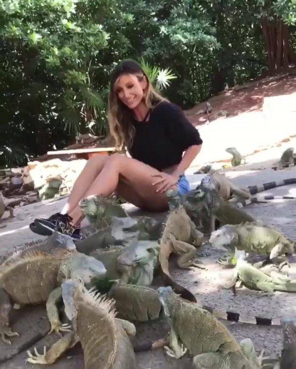 Mulher alimentando muitos animais próximos ao seu corpo, teria coragem?