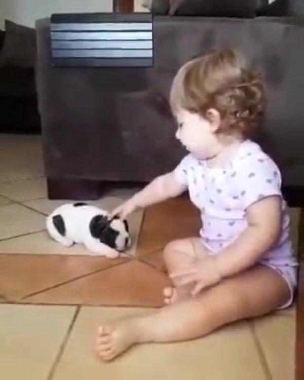 O começo de uma amizade de verdade e sincera, cachorro e criança!