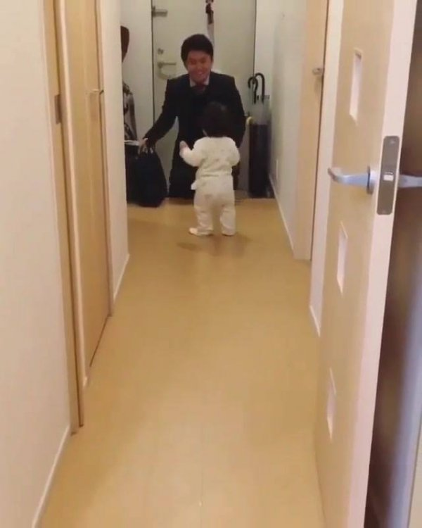 Bebê aprendendo a andar vai de encontro com papai, que lindo vídeo!!!