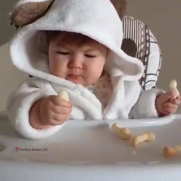 Bebê fofo comendo biscoito, parece um ursinho sentado na cadeirinha de Papa