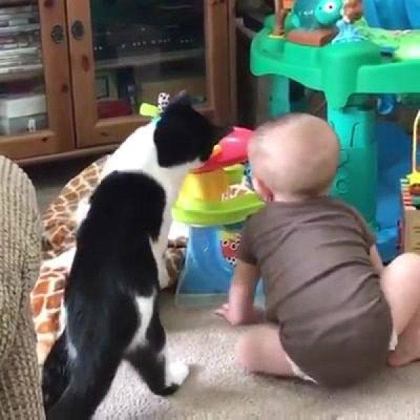 Bebês brincando e divertindo os adultos, muito engraçados hahaha!