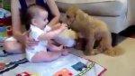 Os bebês e seus filhotes, quanta fofura!!! Nem da pra descrever como e lindo!