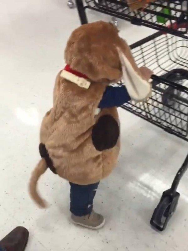 Crianças em supermercados, eles são extremamente incríveis!