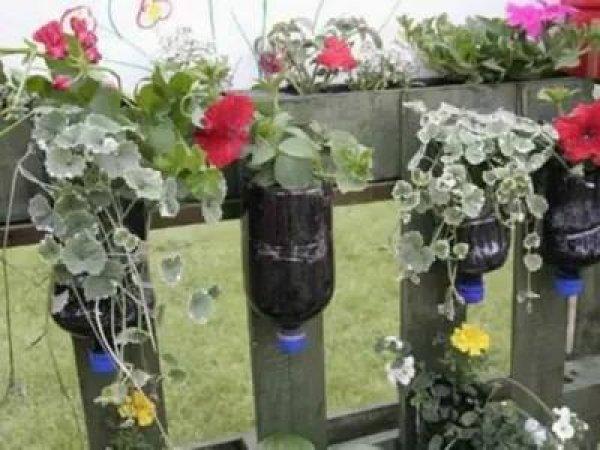 Ideias para fazer jardim em casa sem quintal, são legais!