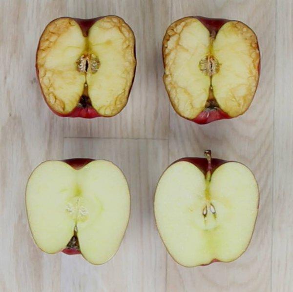 Linda lição que professora fez usando duas maçãs como exemplo, confira!!!