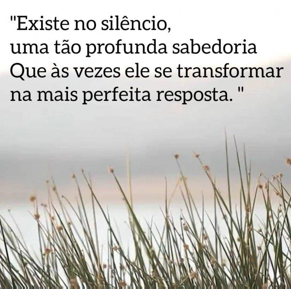 Mensagem interessante sobre a verdadeira sabedoria do silencio!!!