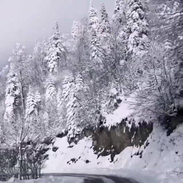 Estrada com montanhas e arvores cobertas de neve, veja que imagens lindas!!!