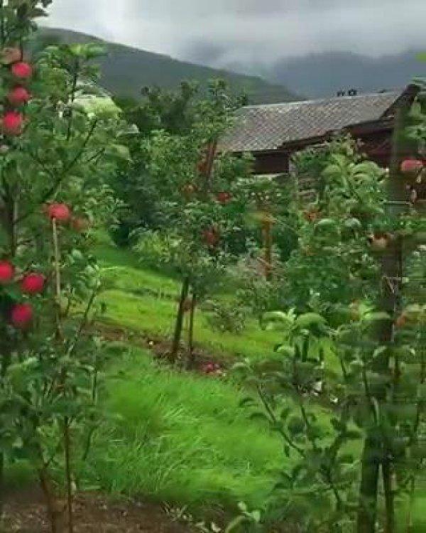 Imagens da natureza na Noruega, o pais mais lindo do mundo!