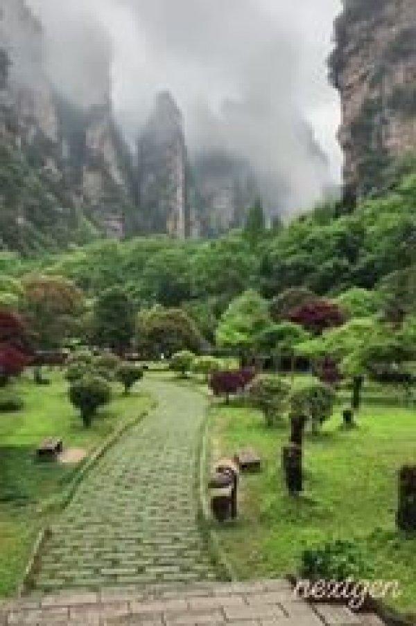 Momento de apreciar a natureza, veja que lugares mais belos e cheios de vida!!!
