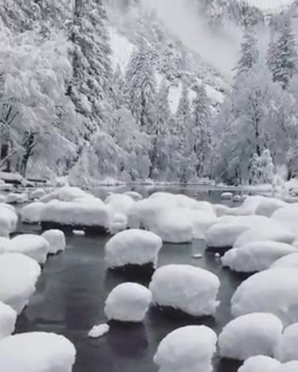 Paisagem de inverno com arvores cobertas de neve, veja que coisa mais linda!!!