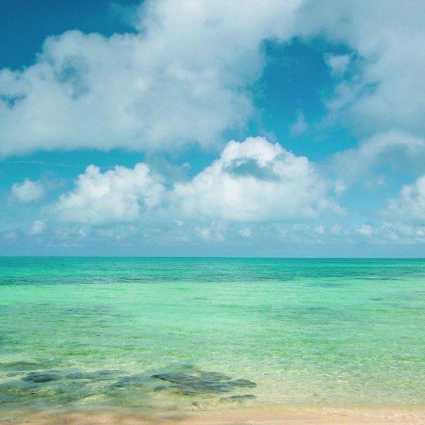 Praia com águas cristalinas, em algum lugar do mundo! A natureza é maravilhosa!