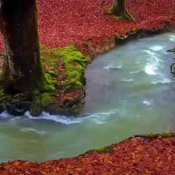 Um lugar maravilhoso da natureza, parece que é de mentira de tão lindo!
