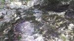 Um pequeno riacho de nossa linda mãe natureza, água é vida!!!