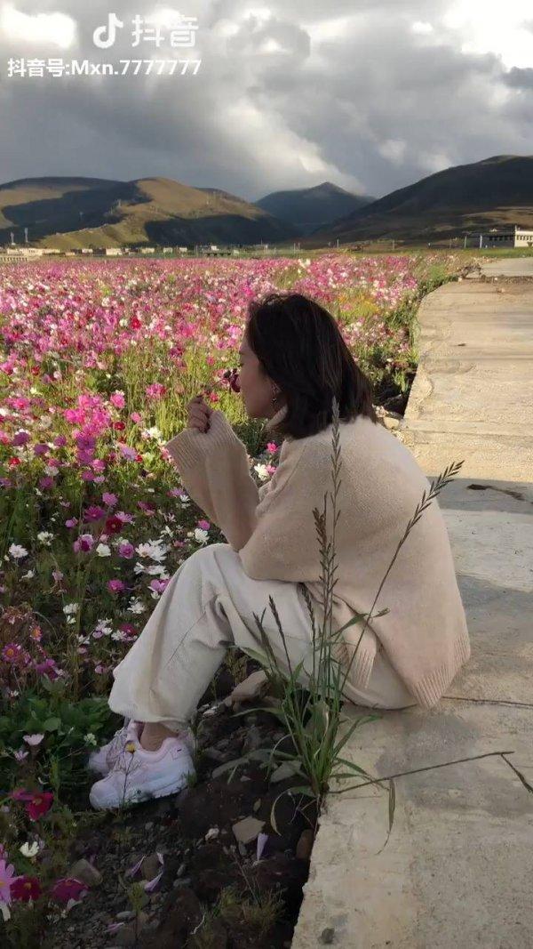 Vídeo com lindo campo de flores, simplesmente maravilhoso o lugar!!!