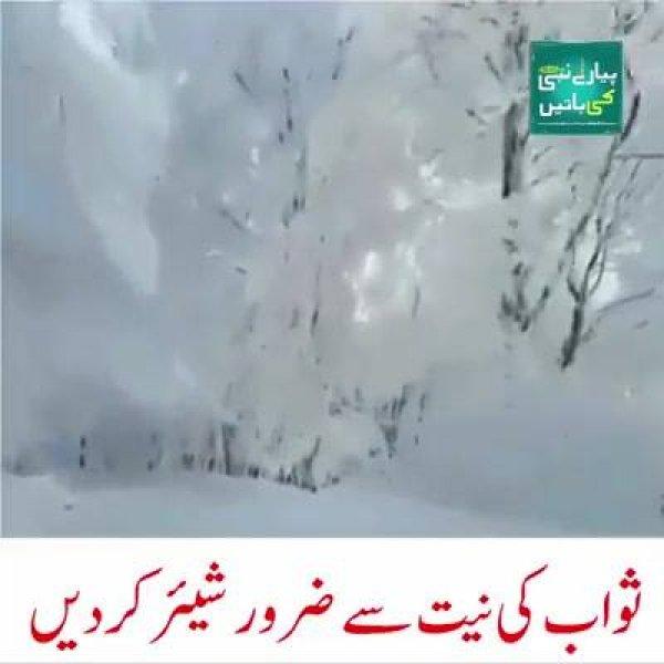 Vídeo mostrando linda paisagem pós nevasca, as images são magicas!!!
