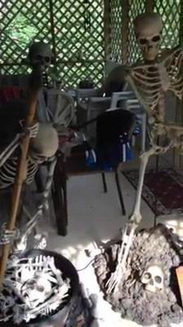 Esqueletos para enfeitar a frente de sua casa no Halloween, olha que assustador!