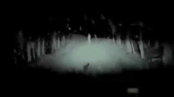 Feliz Halloween! Envie este vídeo para seus amigos no dia das bruxas!!!