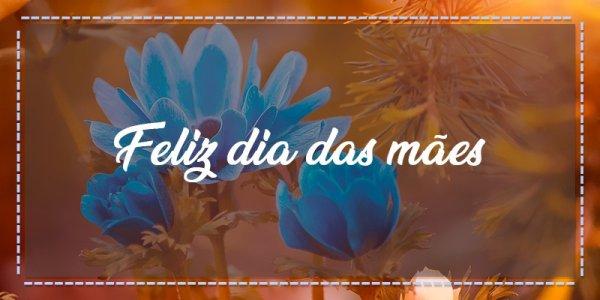 Mensagem para o dia das mães para postar no Facebook, obrigado por tudo mãe