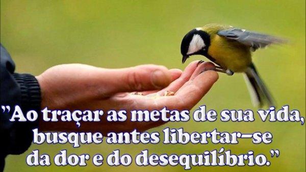 Mensagem de boa noite com música do cantor Thiaguinho - Simples Desejo!