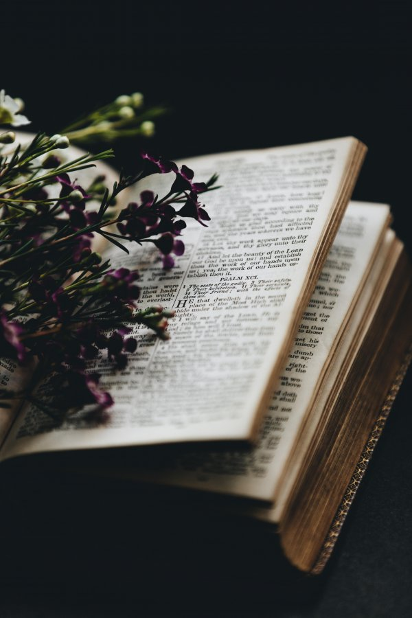 Mensagem de boa tarde da bíblia - Uma linda mensagem para Facebook!