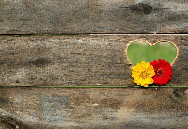 Mensagem de Boa Tarde para esposo ou namorado! Beijos de Boa Tarde meu amor!!