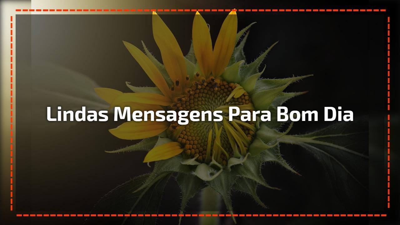 Mensagem De Bom Dia Para Amigos Que Todos Sejam Abençoados: Videos De Bom Dia Para Whatsapp E Facebook Com Lindas