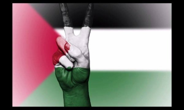 Dia 29 de novembro é Dia internacional da Solidariedade com Povo Palestino!!!