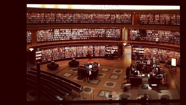 Dia 9 de Abril é Dia Nacional da Biblioteca - vamos incentivar a leitura!