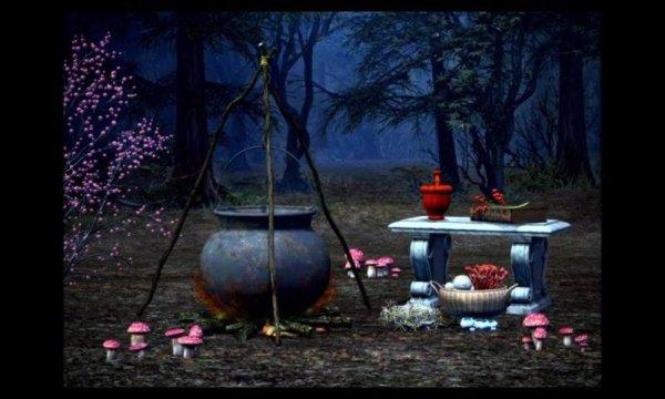 Halloween - No dia das bruxas esperamos acontecimentos grandiosos...