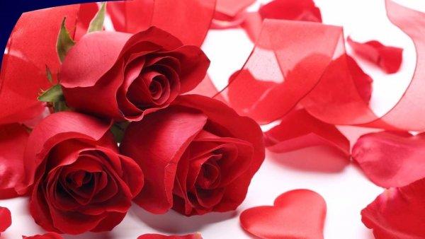 Mensagem de Dia dos Namorados, que venha mais anos juntos para comemorar!!!