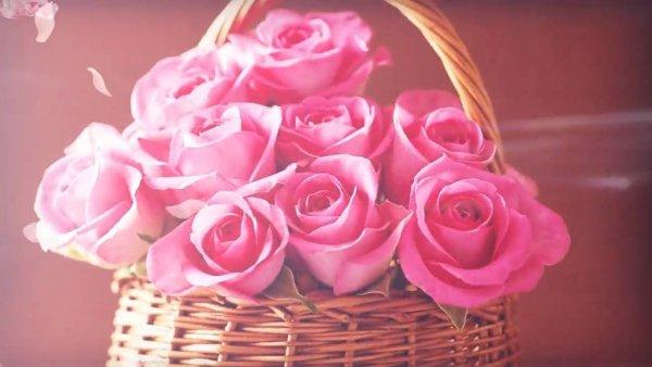 Mensagem para o dia internacional das mulheres com rosas!