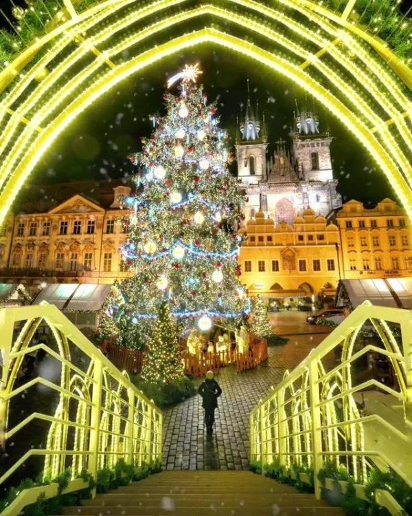 Imagem de Árvore de Natal para postar no Facebook e colocar uma linda mensagem!