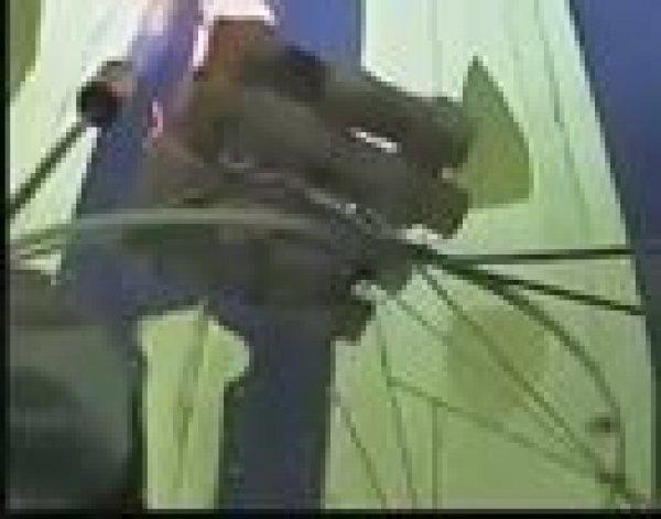 Vídeo lindo com balão com imagem de Nossa Senhora Aparecida!!!