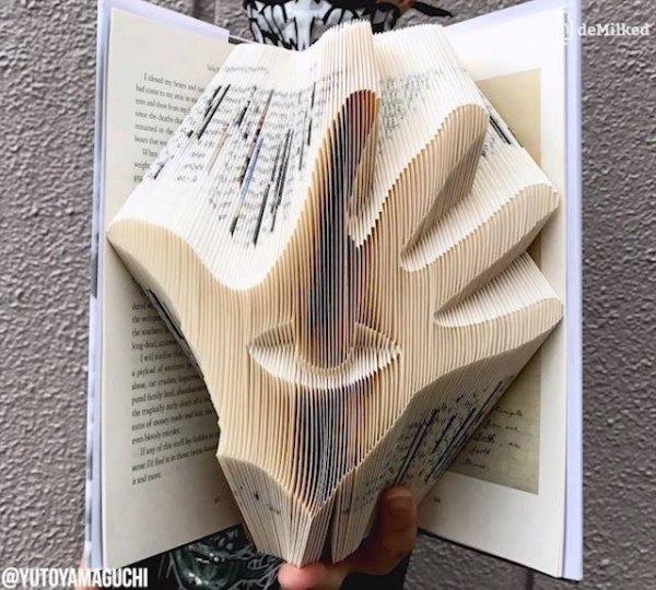 Arte de transformar livros em imagem apenas com dobraduras!!!!