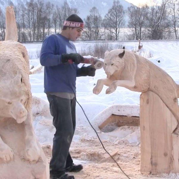Lobos esculpidos em troncos de árvores, são lindos demais!