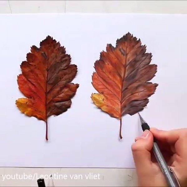 Vídeo com desenhista fazendo a replica de uma folha, é fantastico!!!