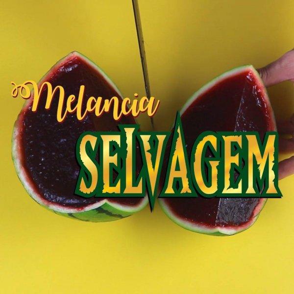 Receita de melancia selvagem vegana, olha só que delicia de receita!!!